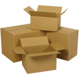 Χαρτοκιβώτια κενά τρίφυλλα OEM