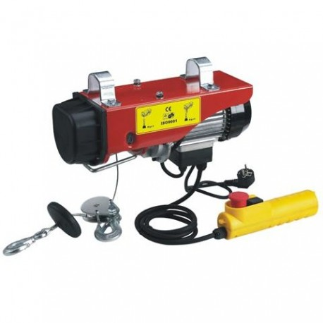 Ηλεκτρικό Παλάγκο 100-200kg 450W